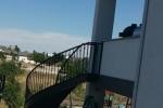Steel circular stair, installed